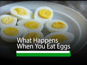 What Happens When You Eat Eggs